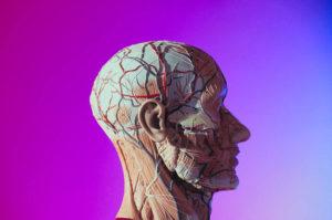 Typische Symptome bei Migräne